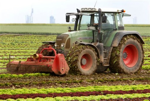 Just like we predicted, Europe shredding the evidence of e-coli contaminated vegetables - no way to identify GMO after it is shredded!!